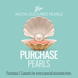 Purchase Pearls - Create-A-Pearl® Pearls by My First Pearls® - Premier Japanese Akoya Cultured Pearls - A Pearl at a Time® - Add a Pearl for Every Special Occasion - 6.0mm - 6.5mm/